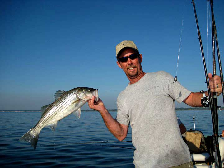 About dee angle 39 s guide service lake texoma fishing guide for Fishing guides on lake texoma