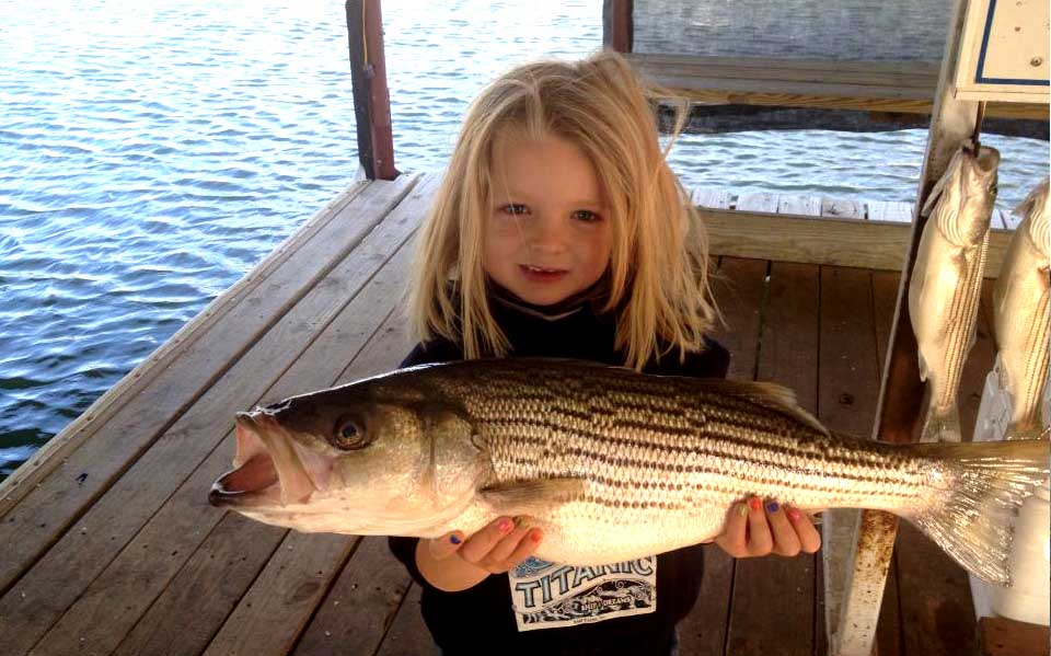 Lake texoma fishing guide dee angle for Fishing guides on lake texoma